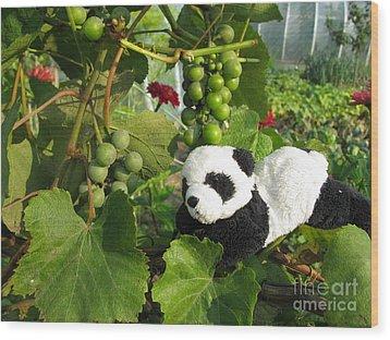 Wood Print featuring the photograph I Love Grapes Says The Panda by Ausra Huntington nee Paulauskaite