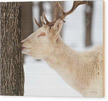 I Love This Tree Wood Print