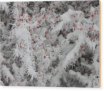 I Love Winter Wood Print by Carol Groenen