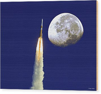 I Need My Space Wood Print by Roger Wedegis