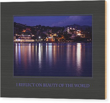 I Reflect On Beauty Of The World Wood Print by Donna Corless