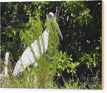I See You Wood Print by Terri Mills
