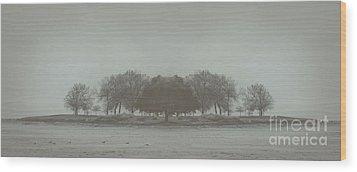 I Will Walk You Home Wood Print by Dana DiPasquale