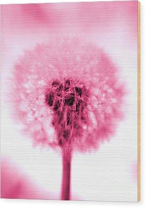 I Wish In Pink Wood Print by Valerie Fuqua