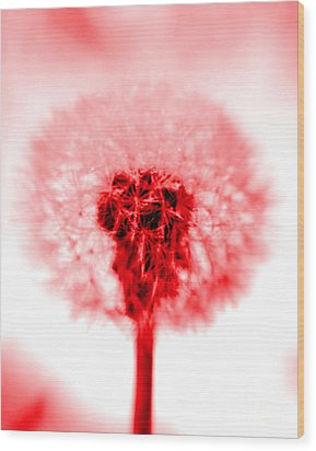 I Wish In Red Wood Print by Valerie Fuqua