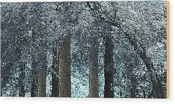 Ice Blue Arch Wood Print