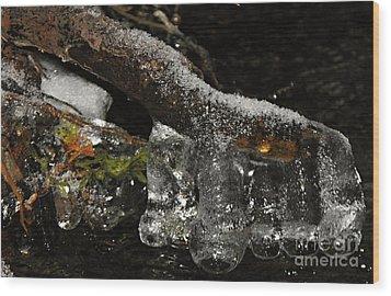 Ice Boots Wood Print