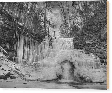 Ice Castle Wood Print by Lori Deiter