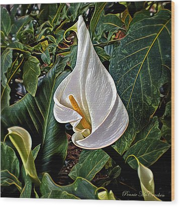 Wood Print featuring the digital art Ice Cream Calla Lily by Pennie  McCracken