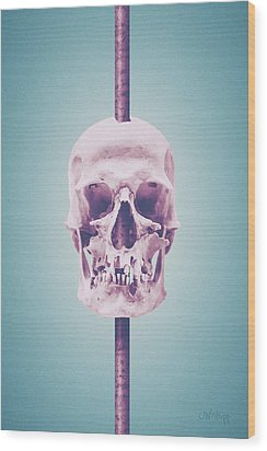 Wood Print featuring the photograph Ice Cream by Joseph Westrupp