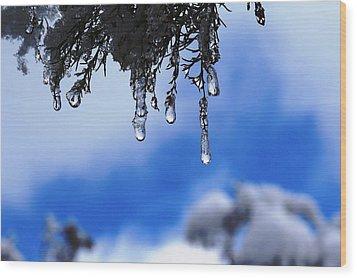 Ice Drops Wood Print