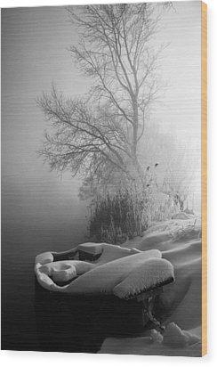 Ice Pier Wood Print by Davorin Mance