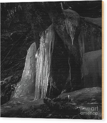 Icicle Of The Forest Wood Print