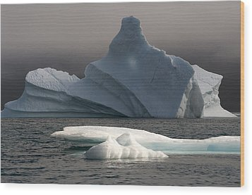 Ice Pinacle Wood Print by Elisabeth Van Eyken