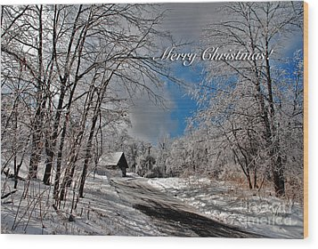 Ice Storm Christmas Card Wood Print by Lois Bryan