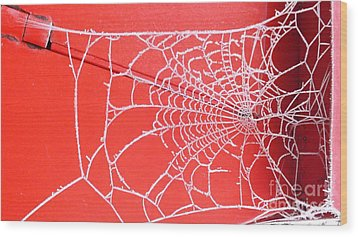 Ice Web Wood Print