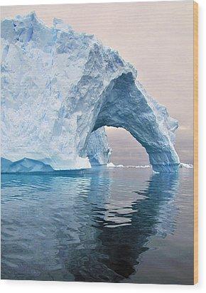 Iceberg Alley Wood Print by Tony Beck