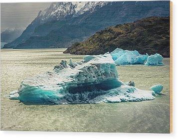 Iceberg Wood Print by Andrew Matwijec