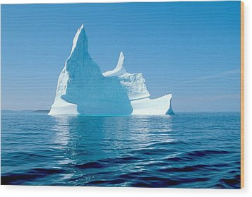 Iceberg Wood Print by Douglas Pike