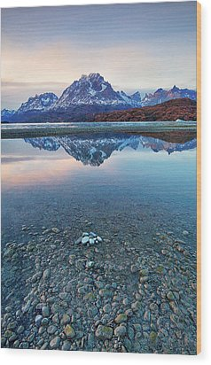 Icebergs And Mountains Of Torres Del Paine National Park Wood Print