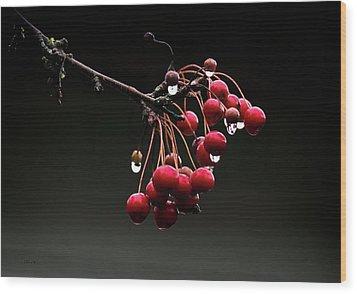 Iced Crab Apples Wood Print