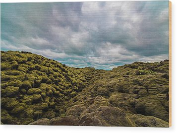 Iceland Moss And Clouds Wood Print by Venetia Featherstone-Witty