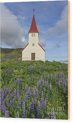 Wood Print featuring the photograph Icelandic Church Among The Fields Of Lupine by Edward Fielding