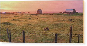 Wood Print featuring the photograph Icelandic Farm During Sunset by Brad Scott