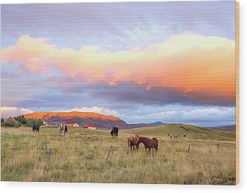 Wood Print featuring the photograph Icelandic Horses Under The Sunset by Brad Scott