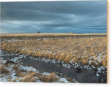 Wood Print featuring the photograph Icelandic Landscape by Dubi Roman