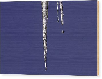 Wood Print featuring the photograph Icicle  by Sherri Meyer