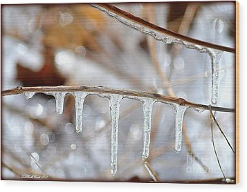 Icicles And Bokeh Wood Print by Deb Badt-Covell