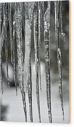 Wood Print featuring the photograph Icicles by Juls Adams