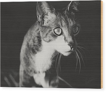 Ickis The Cat Wood Print