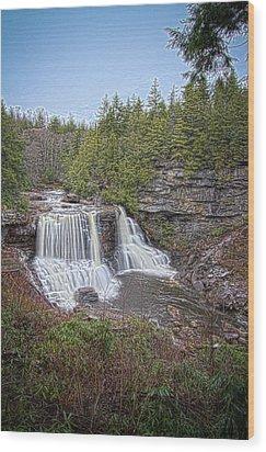 Iconic Falls Wood Print