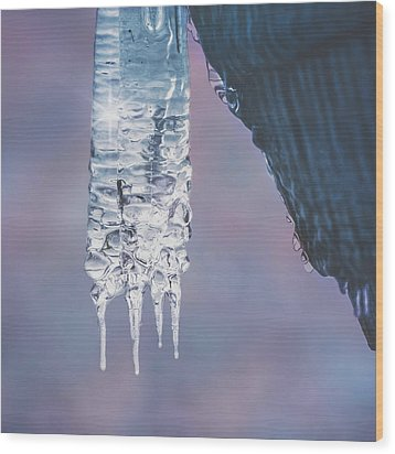 Wood Print featuring the photograph Icy Beauty by Ari Salmela