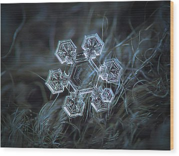 Wood Print featuring the photograph Icy Jewel by Alexey Kljatov