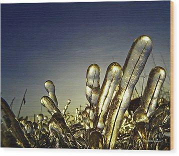 Icy Lawn Wood Print