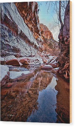 Icy Stillness Wood Print by Christopher Holmes