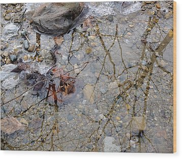 Wood Print featuring the photograph Icy Stream by Scott Kingery