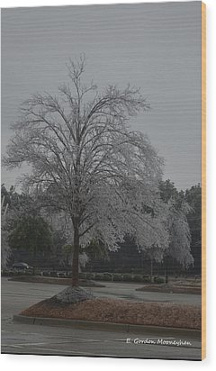 Icy Tree Wood Print by Gordon Mooneyhan