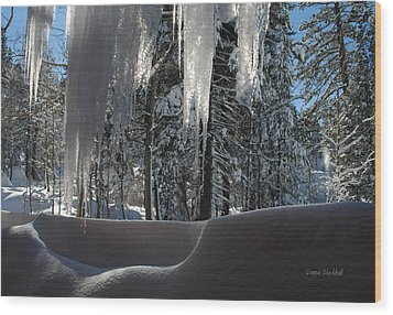 Icy Viewpoint Wood Print by Donna Blackhall
