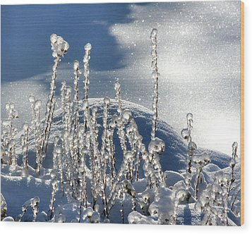 Wood Print featuring the photograph Icy World by Doris Potter