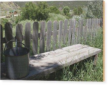 Idaho Farm2 Wood Print by Cynthia Powell