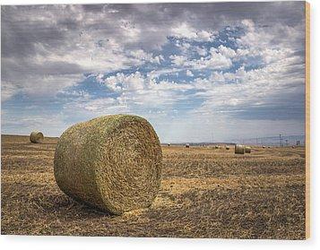 Idaho Hay Bale Wood Print