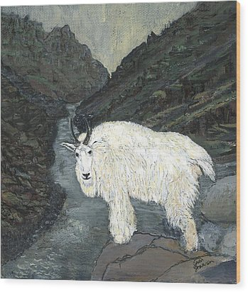 Idaho Mountain Goat Wood Print