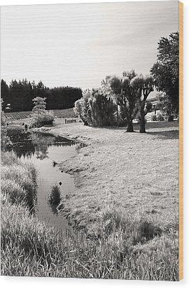 Idylic Stream Wood Print by Everett Bowers