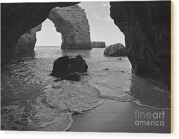 Idyllic Cave In Monochrome Wood Print by Angelo DeVal