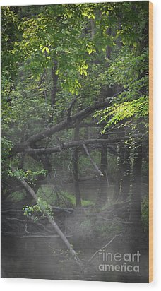 Wood Print featuring the photograph If A Tree Falls In The Woods by Skip Willits