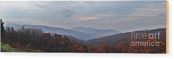 If I Were A Bird    Shenandoah Nation Park Wood Print by Steven Lebron Langston